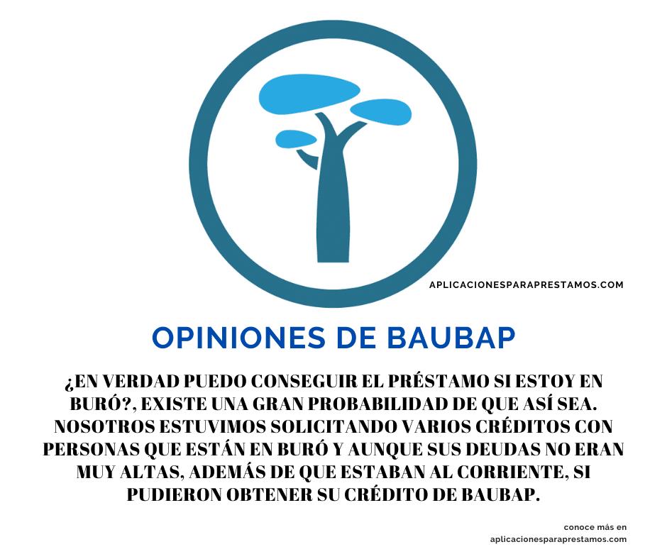opiniones de baubap